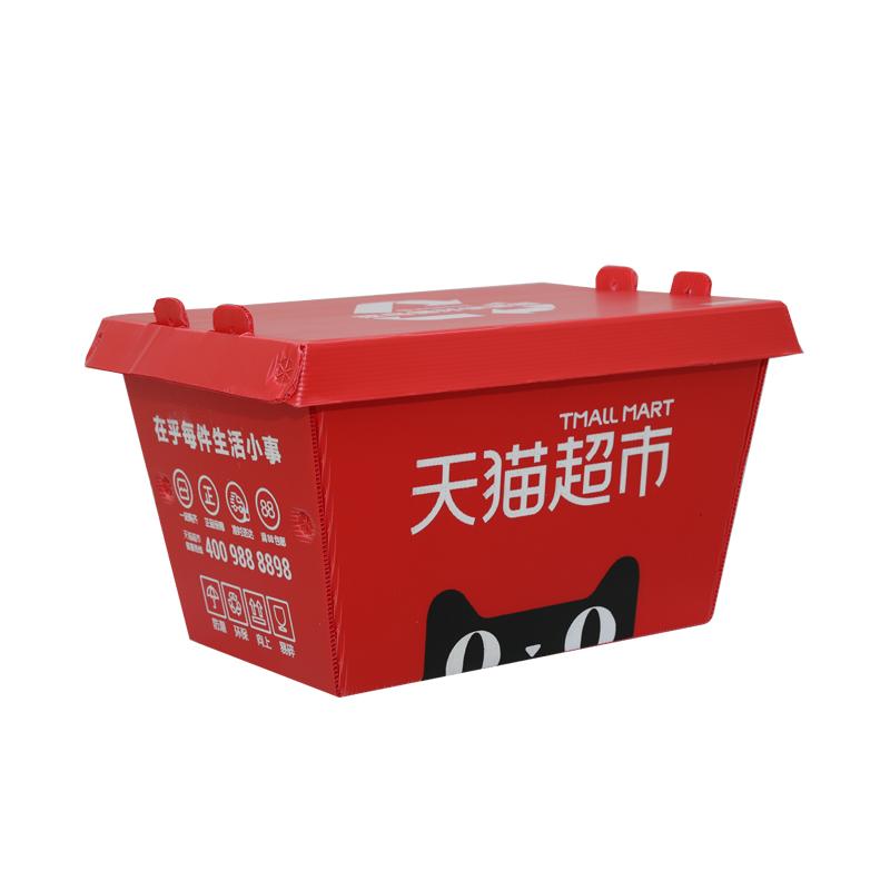 Cajas de entrega urgente de plástico corrugado contenedores de diseño de color de tamaño personalizado para embalaje o logística