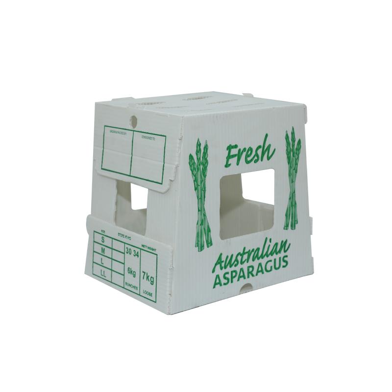 Cajas agrícolas de plástico corrugado contenedores para vegetales tamaño personalizado diseño de color para empaque o circulación